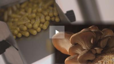 Léky z hub