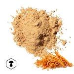 LifeChi - Housenice červená (Cordyceps militaris) extrakt v prášku 50 g