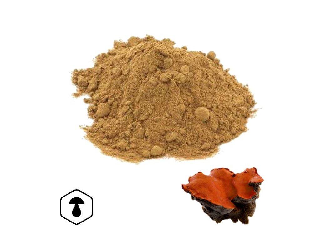 LifeChi - Outkovka kafrová (Antrodia cinnamomea) extrakt v prášku 50 g