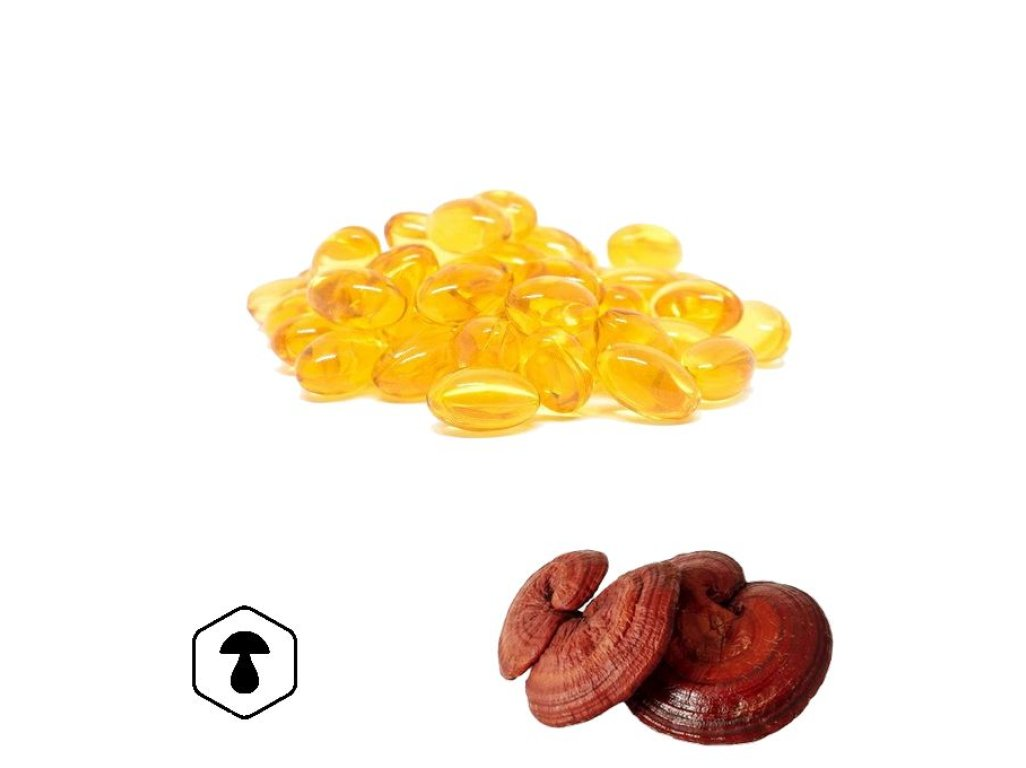 LifeChi - Reishi (Ganoderma lucidum) spórový olej 120 tbl