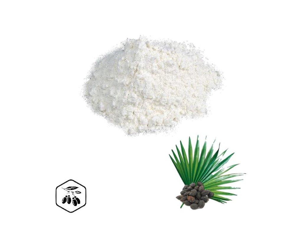 LifeChi - Serenoa plazivá (Saw palmetto) extrakt v prášku 50 g