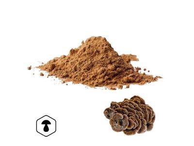 LifeChi - Outkovka pestrá (Coriolus versicolor) extrakt v prášku 50 g