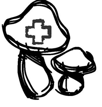 Funkční a vitální houby