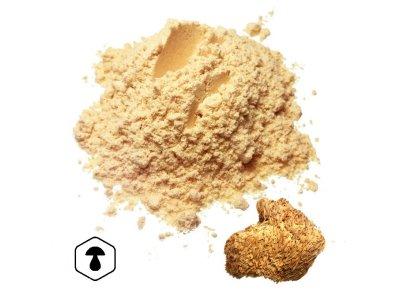LifeChi - Korálovec ježatý (Hericium erinaceus) houbový prášek 100 g