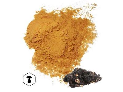 LifeChi - Choroš oříš (Polyporus umbellatus) extrakt v prášku 50 g