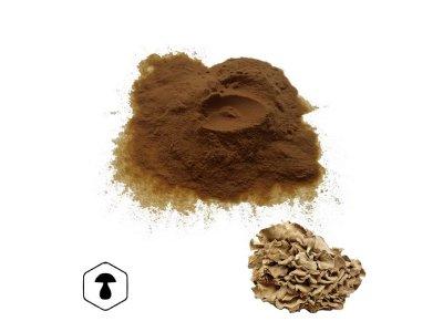 LifeChi - Trsnatec lupenitý (Grifola frondosa) extrakt v prášku 50 g