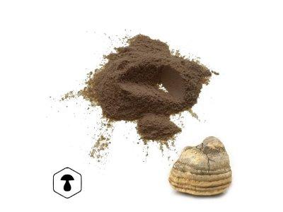 LifeChi - Verpáník lékařský (Laricifomes officinalis) extrakt v prášku 50 g