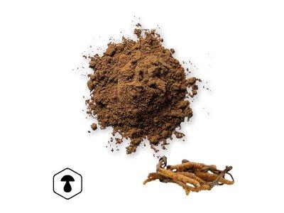 LifeChi - Housenice čínská (Cordyceps sinensis) houbový prášek 100 g